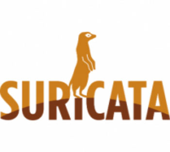 Open Source IDS Tools: Сравнение Suricata, Snort, Bro (Zeek), Linux